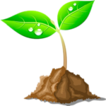 Agenzia di grafica - TreeLab Agency